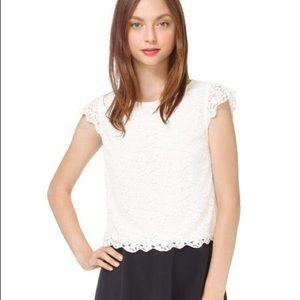 Talula Crop Lace Shirt Burgundy Sz. S